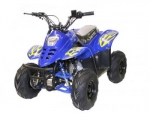 Quad, ATV, Mini Quad