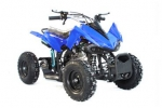 "Das neue Model Quad PYTHON 6"" mit E-Starter, Highlight 49cm� 4-Takt Mini Quad, Kinderquad"