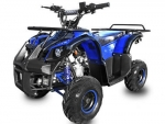 Quad 125cc, Toronto, Middle Quad, ATV, Jugendquad, Quad